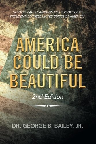 America Could Be Beautiful: A Poor Man's Campaign for the Office of President of These United States of America  2013 9781483669762 Front Cover