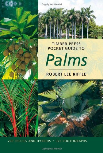 Timber Press Pocket Guide to Palms   2008 9780881927764 Front Cover
