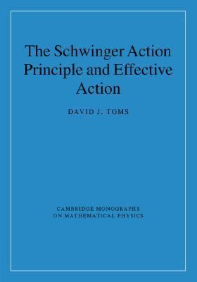 Schwinger Action Principle and Effective Action   2008 9780521876766 Front Cover