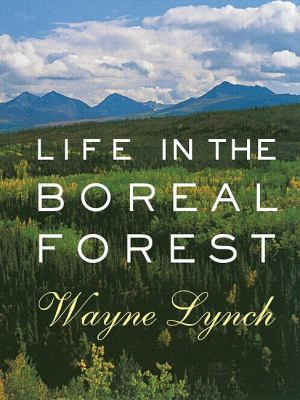 Life in the Boreal Forest   2006 9781550415766 Front Cover