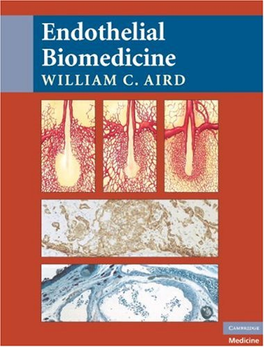 Endothelial Biomedicine   2007 9780521853767 Front Cover