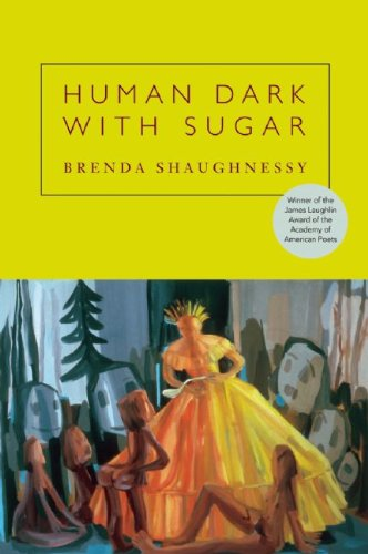Human Dark with Sugar   2008 edition cover