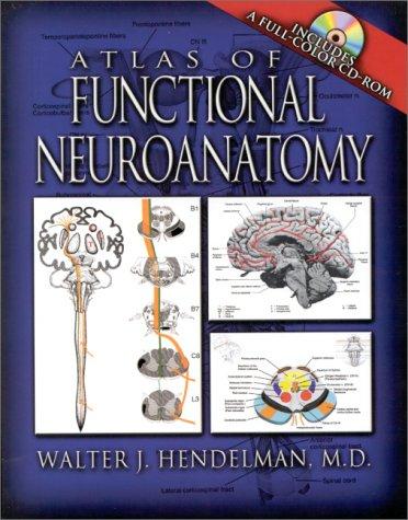 Atlas of Functional Neuroanatomy   2000 edition cover