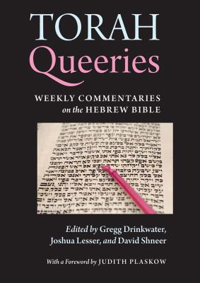 Torah Queeries Weekly Commentaries on the Hebrew Bible  2012 edition cover