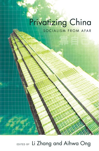 Privatizing China Socialism from Afar  2008 edition cover