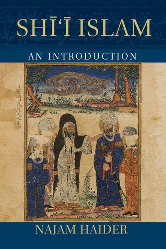 Shi'i Islam An Introduction  2014 9781107625785 Front Cover