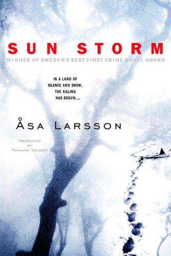 Sun Storm  N/A edition cover