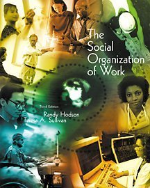 Social Organization of Work  3rd 2002 (Revised) edition cover