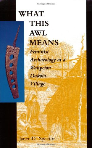 What This Awl Means Feminist Archaeology at a Wahpeton Dakota Village N/A edition cover