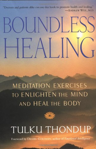 Boundless Healing Meditation Exercises to Enlighten the Mind and Heal the Body N/A edition cover