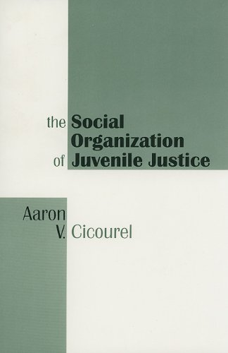 Social Organization of Juvenile Justice   1995 (Reprint) 9781560007791 Front Cover