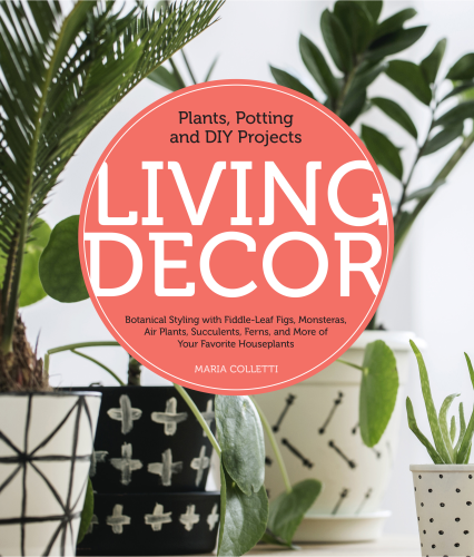 Living Decor Plants, Potting and DIY Projects - Botanical Styling with Fiddle-Leaf Figs, Monsteras, Air Plants, Succulents, Ferns, and More of Your Favorite Houseplants  2019 9780760362792 Front Cover