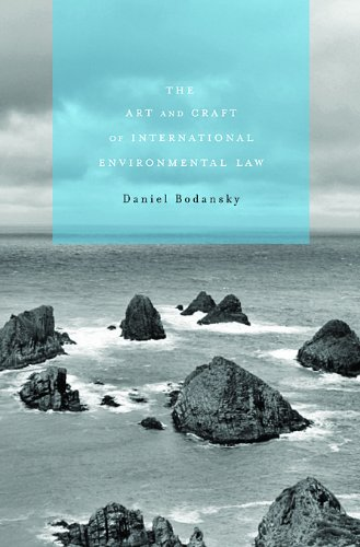 Art and Craft of International Environmental Law   2010 edition cover
