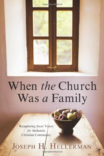 When the Church Was a Family Recapturing Jesus' Vision for Authentic Christian Community N/A edition cover