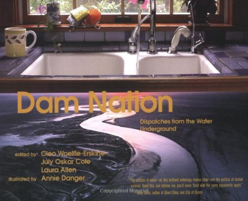 Dam Nation Dispatches from the Water Underground  2005 9781932360806 Front Cover
