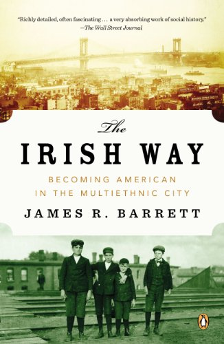 Irish Way Becoming American in the Multiethnic City  2014 edition cover