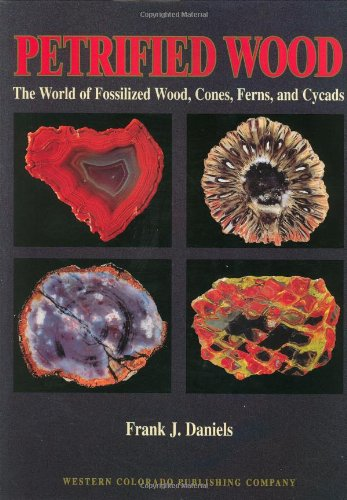 Petrified Wood The World of Fossilized Wood, Cones, Ferns, and Cycads  1998 9780966293807 Front Cover