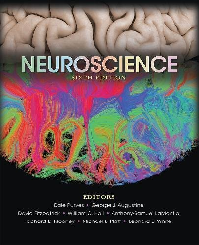 Neuroscience 6e  6th 2018 9781605353807 Front Cover