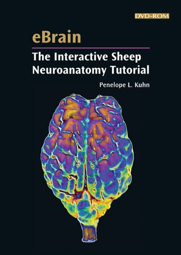 EBrain:the Interactive Sheep Neuroanatomy  N/A edition cover