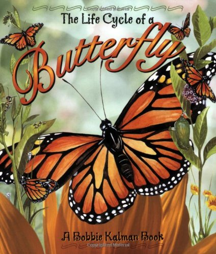 Life Cycle of a Butterfly   2002 edition cover