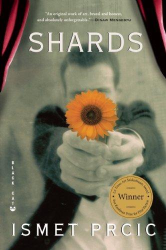 Shards A Novel N/A edition cover