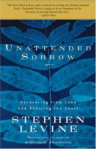 Unattended Sorrow Recovering from Loss and Reviving the Heart N/A edition cover