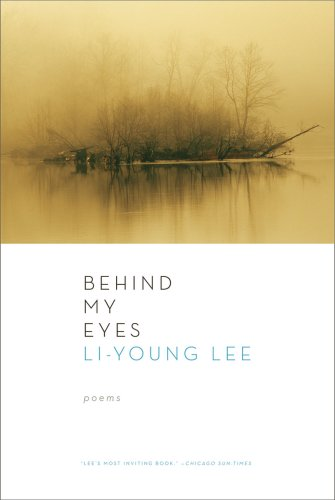 Behind My Eyes   2009 edition cover