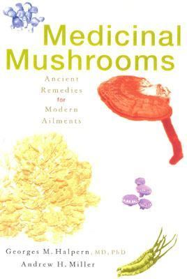 Medicinal Mushrooms Ancient Remedies for Modern Ailments  2002 9780871319814 Front Cover
