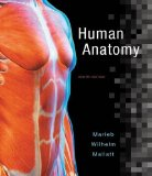 Human Anatomy  8th 2017 9780134243818 Front Cover