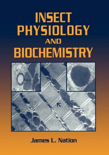 Insect Physiology and Biochemistry   2002 edition cover
