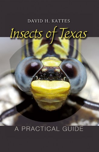 Insects of Texas A Practical Guide  2009 edition cover