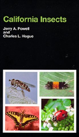 California Insects  N/A edition cover