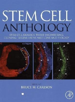 Stem Cell Anthology From Stem Cell Biology, Tissue Engineering, Cloning, Regenerative Medicine and Biology  2010 edition cover