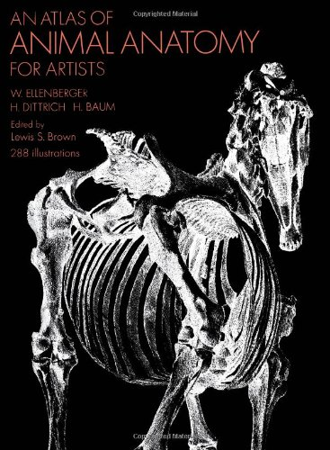 Atlas of Animal Anatomy for Artists  2nd 1956 edition cover