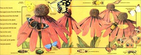 Jack's Garden   1997 edition cover