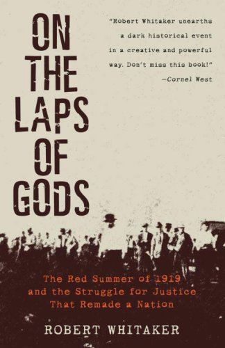 On the Laps of Gods The Red Summer of 1919 and the Struggle for Justice That Remade a Nation N/A edition cover