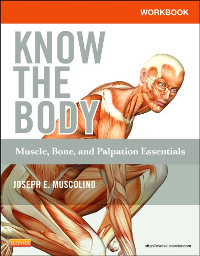 Workbook for Know the Body: Muscle, Bone, and Palpation Essentials   2012 edition cover