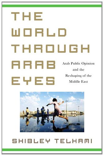 World Through Arab Eyes Arab Public Opinion and the Reshaping of the Middle East  2013 edition cover