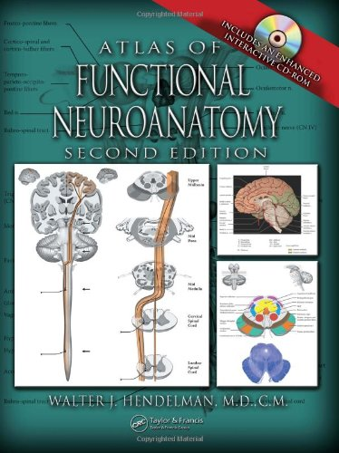 Atlas of Functional Neuroanatomy  2nd 2006 (Revised) edition cover