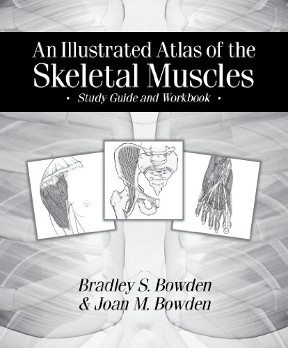 Illustrated Atlas of the Skeletal Muscles Study Guide and Workbook N/A edition cover
