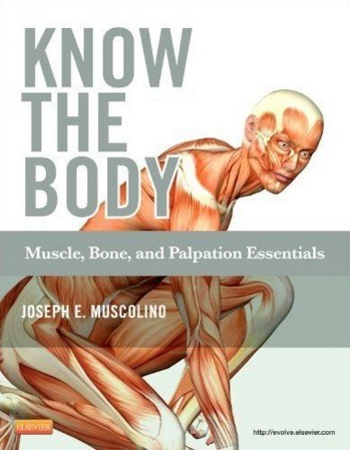 Know the Body Muscle, Bone, and Palpation Essentials  2011 edition cover