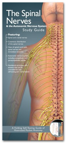 Spinal Nerves and the Autonomic Nervous System  2nd 2007 edition cover