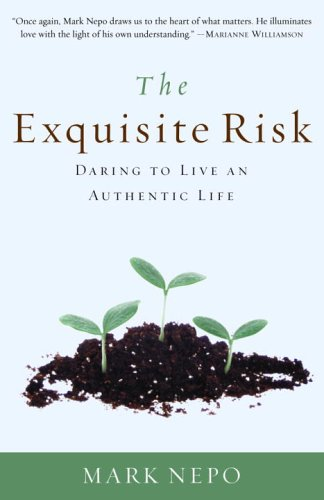 Exquisite Risk Daring to Live an Authentic Life N/A edition cover