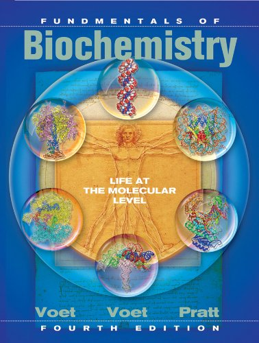 Fundamentals of Biochemistry Life at the Molecular Level 4th 2013 9780470547847 Front Cover