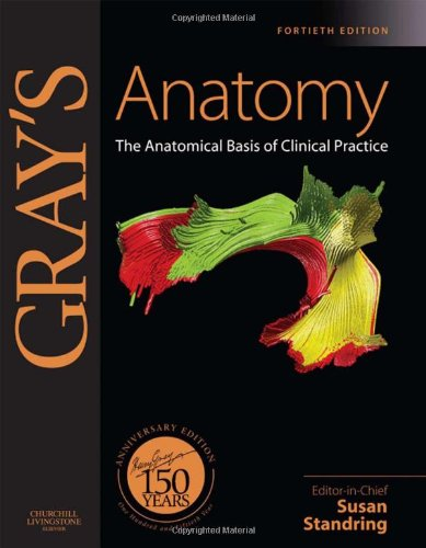 Anatomy The Anatomical Basis of Clinical Practice 40th 2008 edition cover
