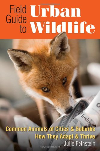 Field Guide to Urban Wildlife   2011 edition cover