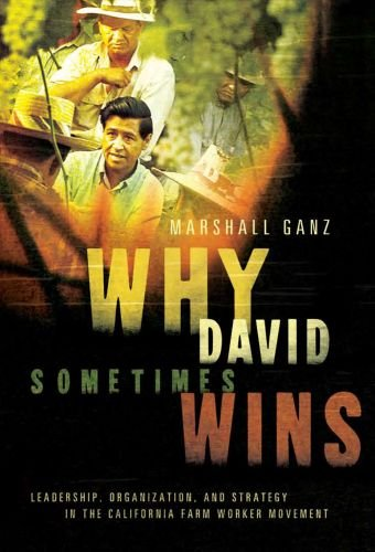 Why David Sometimes Wins Leadership, Organization, and Strategy in the California Farm Worker Movement  2010 edition cover