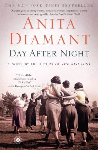 Day after Night   2009 edition cover