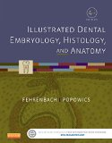 Illustrated Dental Embryology, Histology, and Anatomy  4th 2015 edition cover