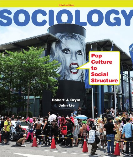 Sociology Pop Culture to Social Structure 3rd 2013 edition cover
